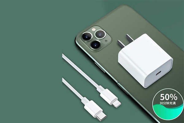 Mini/PD/iPad charging head data cable